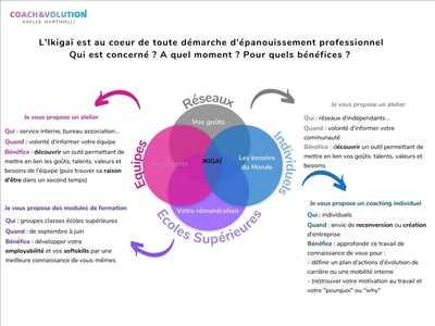 Exemple coach entreprise n°97 zone Loire-Atlantique par Axelle